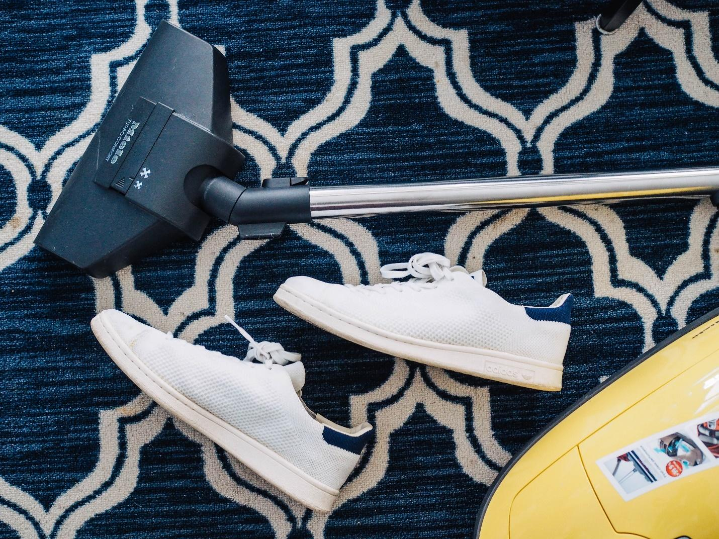 Vacuuming your carpet can prevent bed bugs temporarily